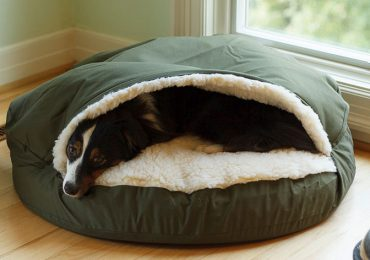 The Coziest Snuggler Dog Bed for Your Snuggling Dog